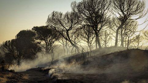 El incendio de Moguer continúa activo
