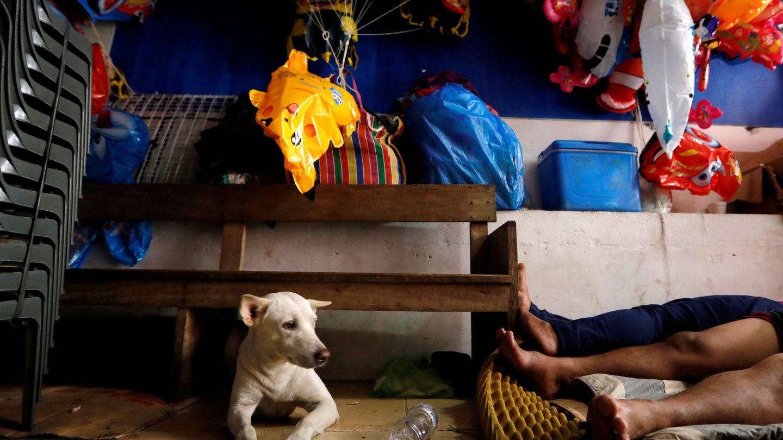 Un perro ve como sus dueños duermen en la cama. Foto: REUTERS Willy Kurniawan