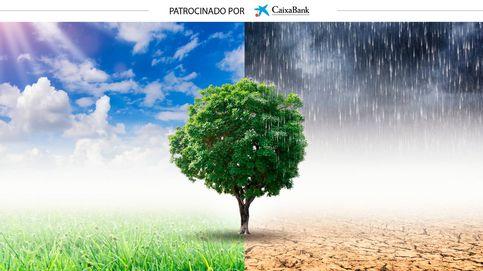 Esto es lo que hacen los bancos españoles para proteger el medioambiente