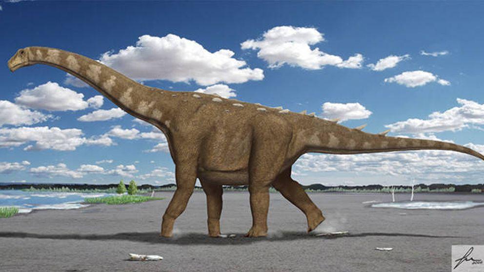 Descubren en Cuenca uno de los últimos dinosaurios gigantes de Europa