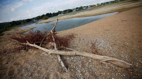 La sequía del Rin