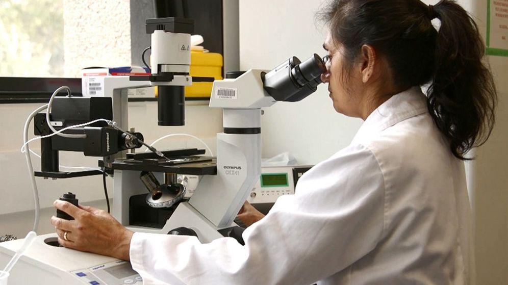 Foto: Una investigadora en un laboratorio (EFE)
