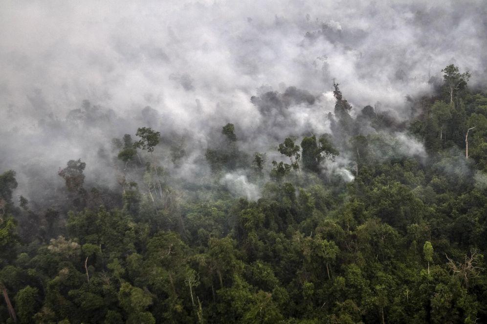 Foto: Incendio en una selva de Sumatra visto desde un helicóptero en septiembre de 2015 (Reuters)