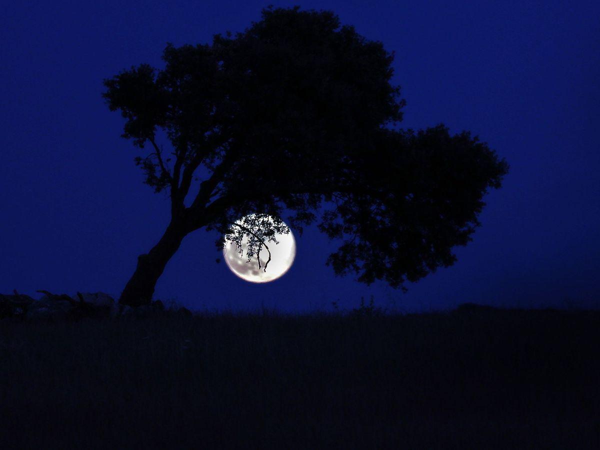 Foto: Eclipse penumbral de junio desde Portugal. (EFE)