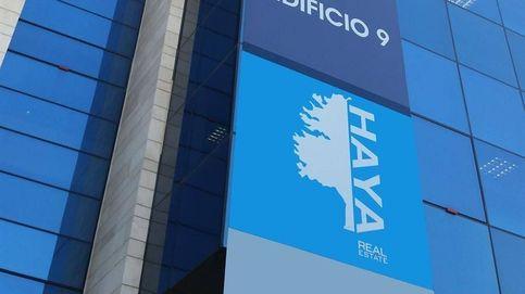 Haya Real Estate eleva un 7% sus ingresos y sitúa su Ebitda en 70,5M