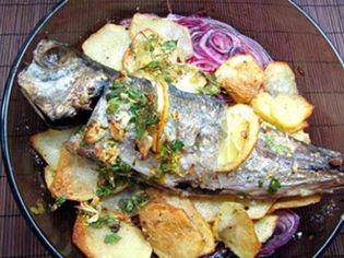 Foto: Un pez humilde, un pescado delicioso: chicharro