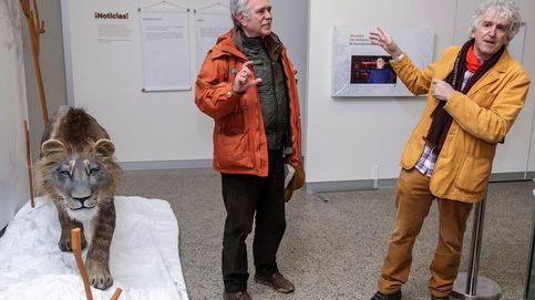 Bisontes en Burgos para la nueva novela prehistórica de Pérez Henares