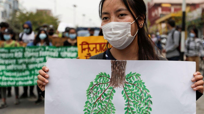 La naturaleza es nuestro mejor aliado para combatir la crisis climática