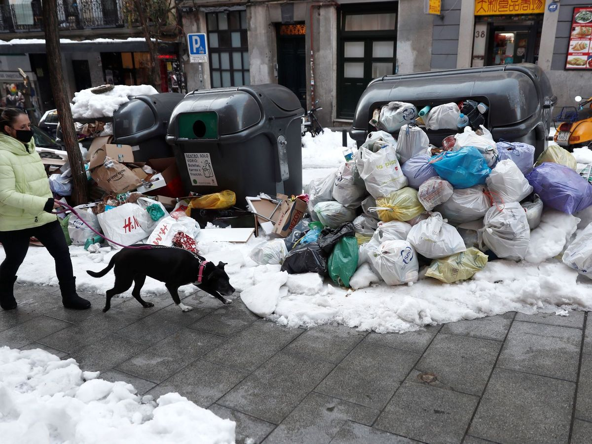 Foto: Una persona y su perro, en Madrid. (EFE)