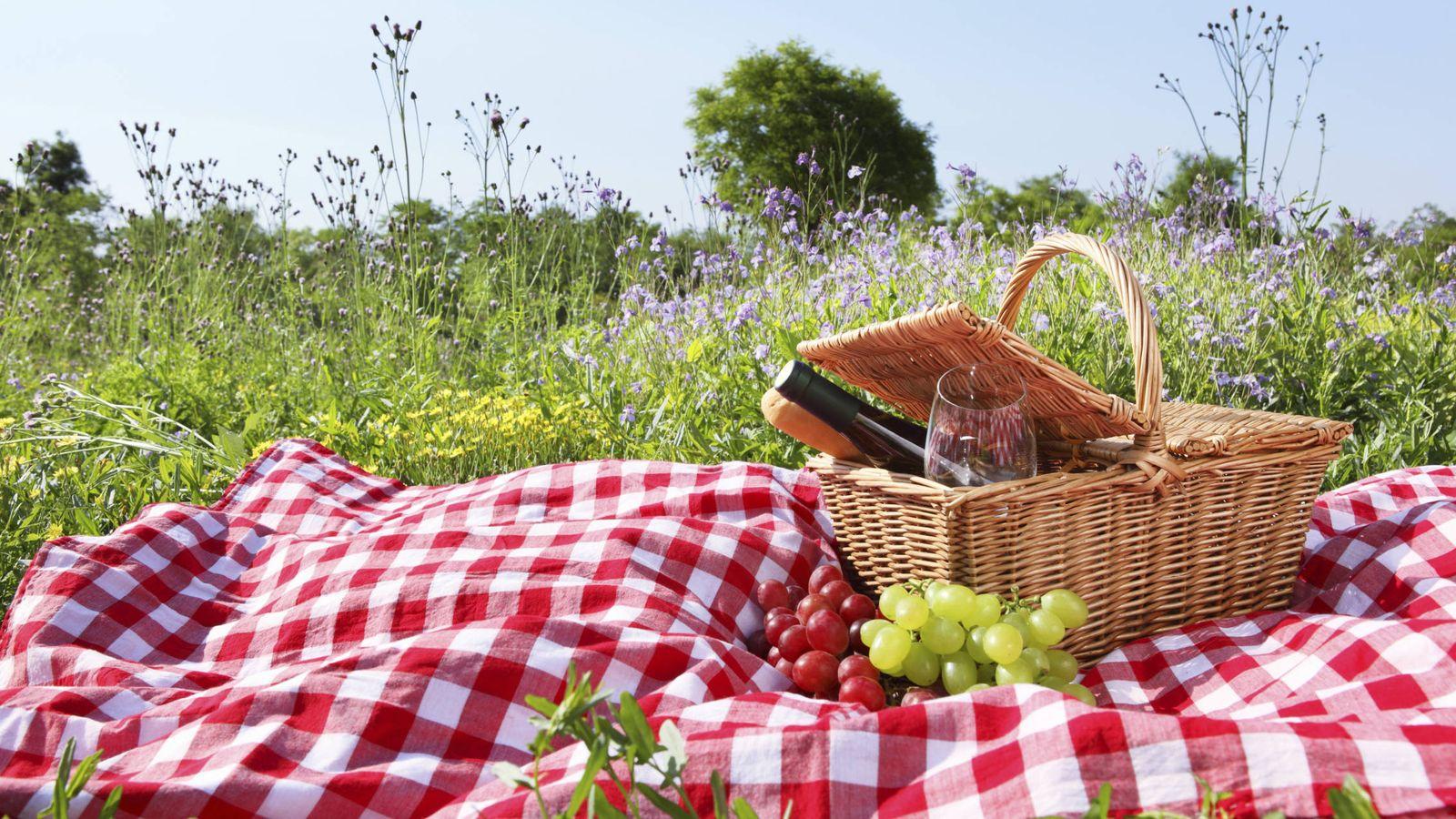 Foto: En las grandes ciudades y alrededores también se puede ir de picnic. (Foto: Repsol)
