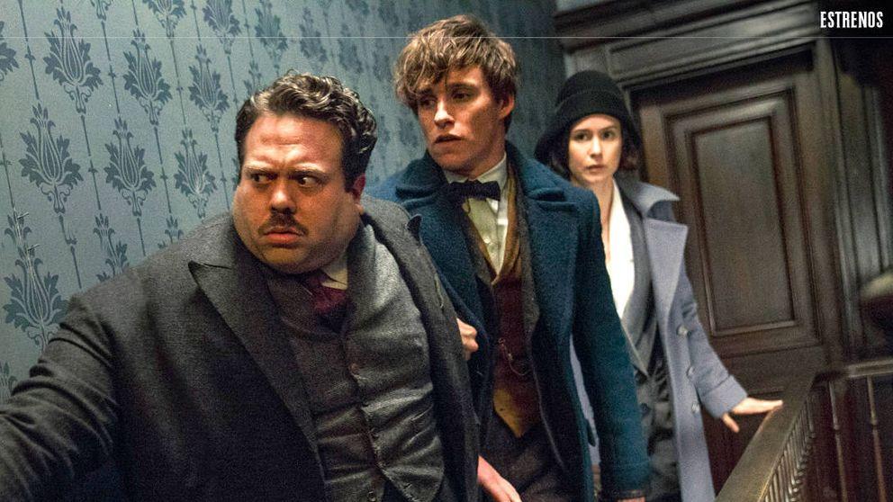 'Animales fantásticos y dónde encontrarlos': sobrevivir a Harry Potter