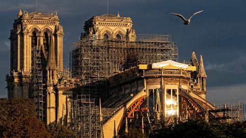 Notre Dame durante el alba