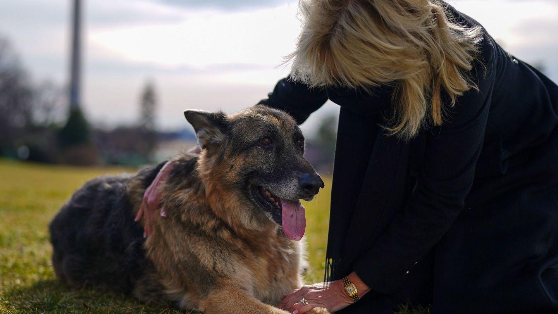 Jill, con el 'primer perro' Champ en los jardines de la Casa Blanca. (EFE)