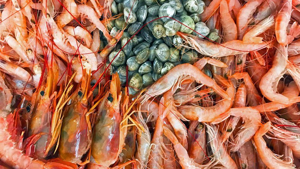 Foto: Deliciosos productos marinos (iStock)