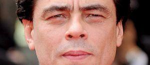 El 'Che' ha resucitado y se llama Benicio del Toro