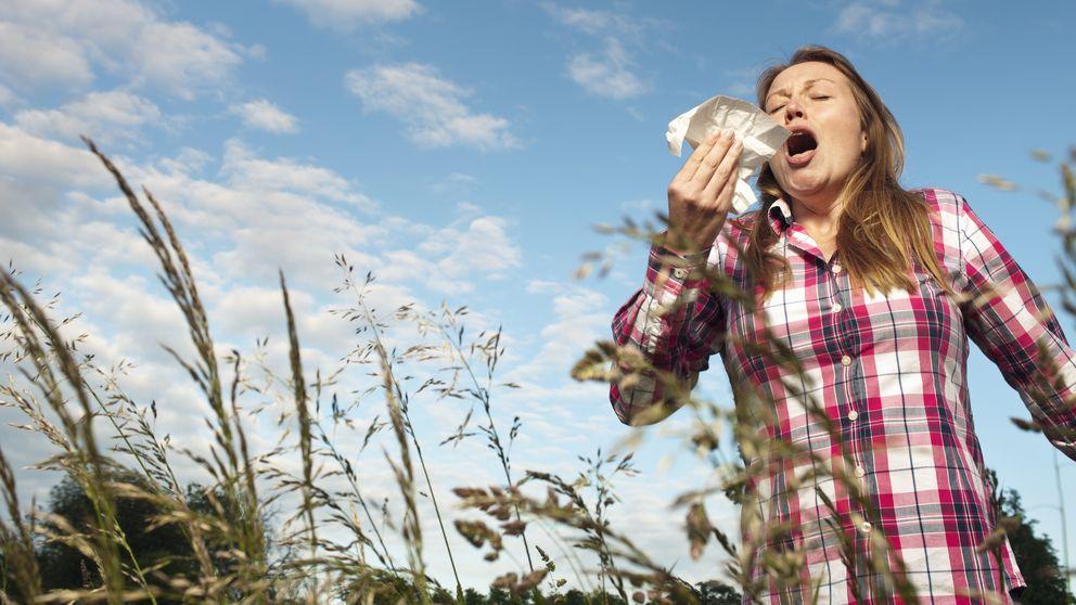 El estudio que cambia todo sobre las alergias: vienen de nuestro interior