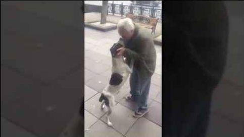 El tierno reencuentro entre un dueño y su perro tras tres años perdido