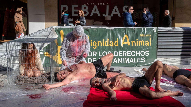 Activistas por los derechos de los animales en Murcia. (EFE)