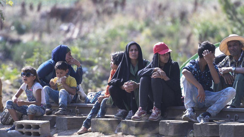 Foto: Inmigrantes cruzan Macedonia para llegar a países de la UE. (EFE)