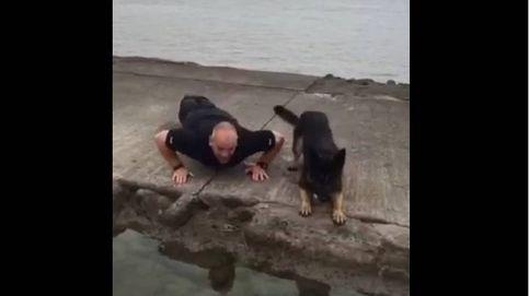 Las 22 flexiones de un perro solidario para luchar contra los suicidios de veteranos de guerra