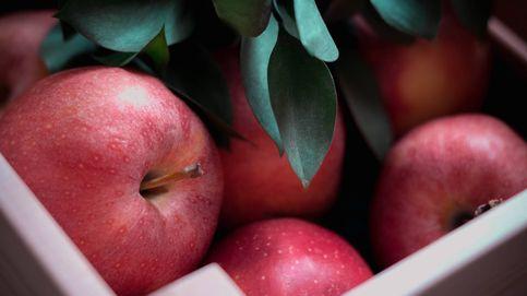 Comer las manzanas con piel puede ayudarte a adelgazar y te contamos por qué