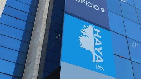 Centricus (Softbank) se planta ante Cerberus y deja en el aire la venta de Haya RE