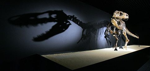 Llega a Madrid la mayor colección de dinosaurios del mundo