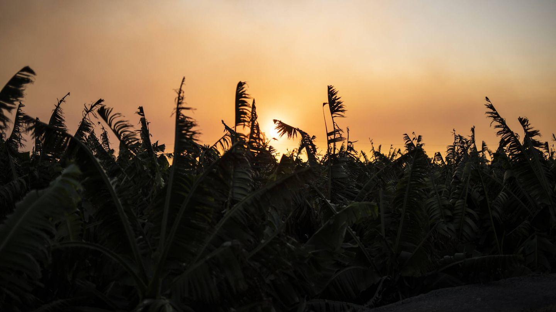 El sol cubierto por la lava y las cenizas del volcán en La Palma. (Alejandro Martínez Vélez)