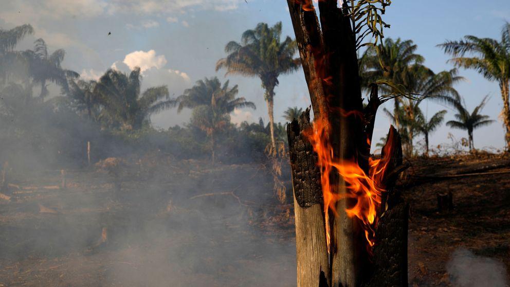 El incendio de la Amazonia brasileña, en imágenes