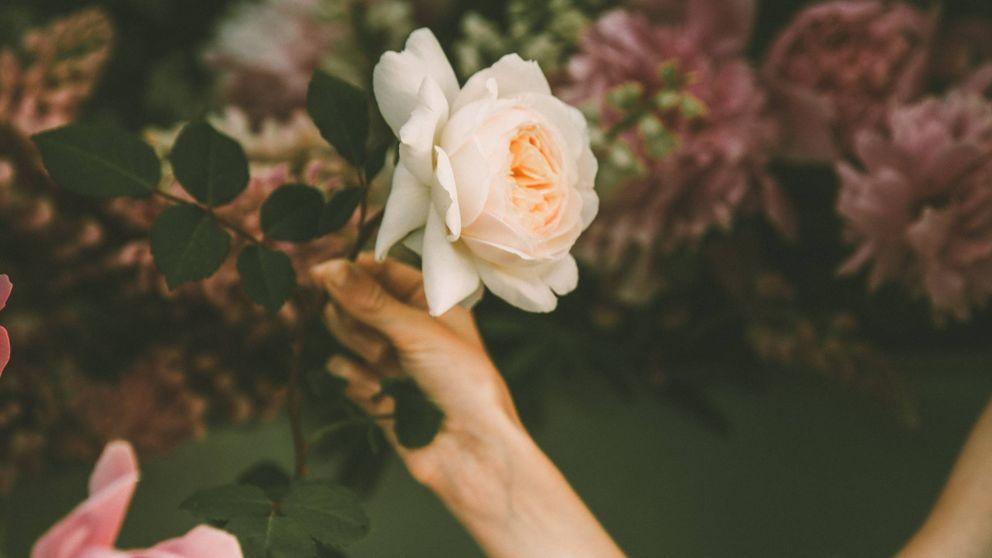 Spas veganos: mejora tu cuerpo y rostro con lo último en cosmética orgánica
