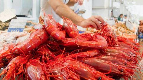 Paradoja en la lonja: el pescador cobra menos y elconsumidor paga más