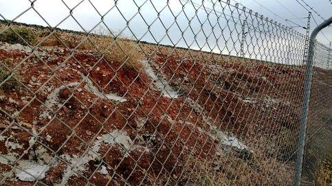 ADIF es denunciada ante la Fiscalía de Jaén por enterrar vivos a miles de conejos