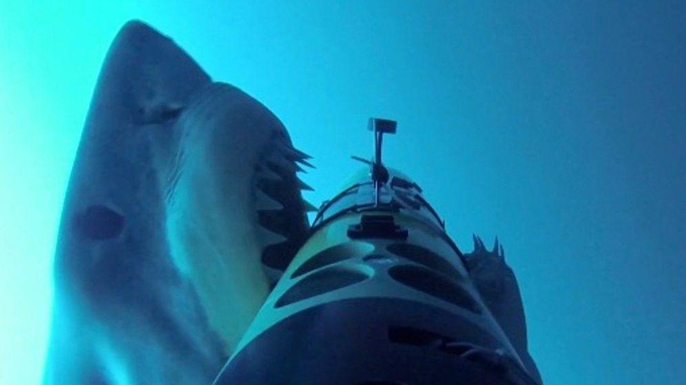 Foto: Un tiburón blanco ataca uno de los vehículos submarinos. / Oceanographic Systems Lab/Woods Hole Oceanographic Institution