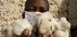 Post de Titanes de algodón: el peligroso trabajo de transportar el 'oro blanco' de Benín