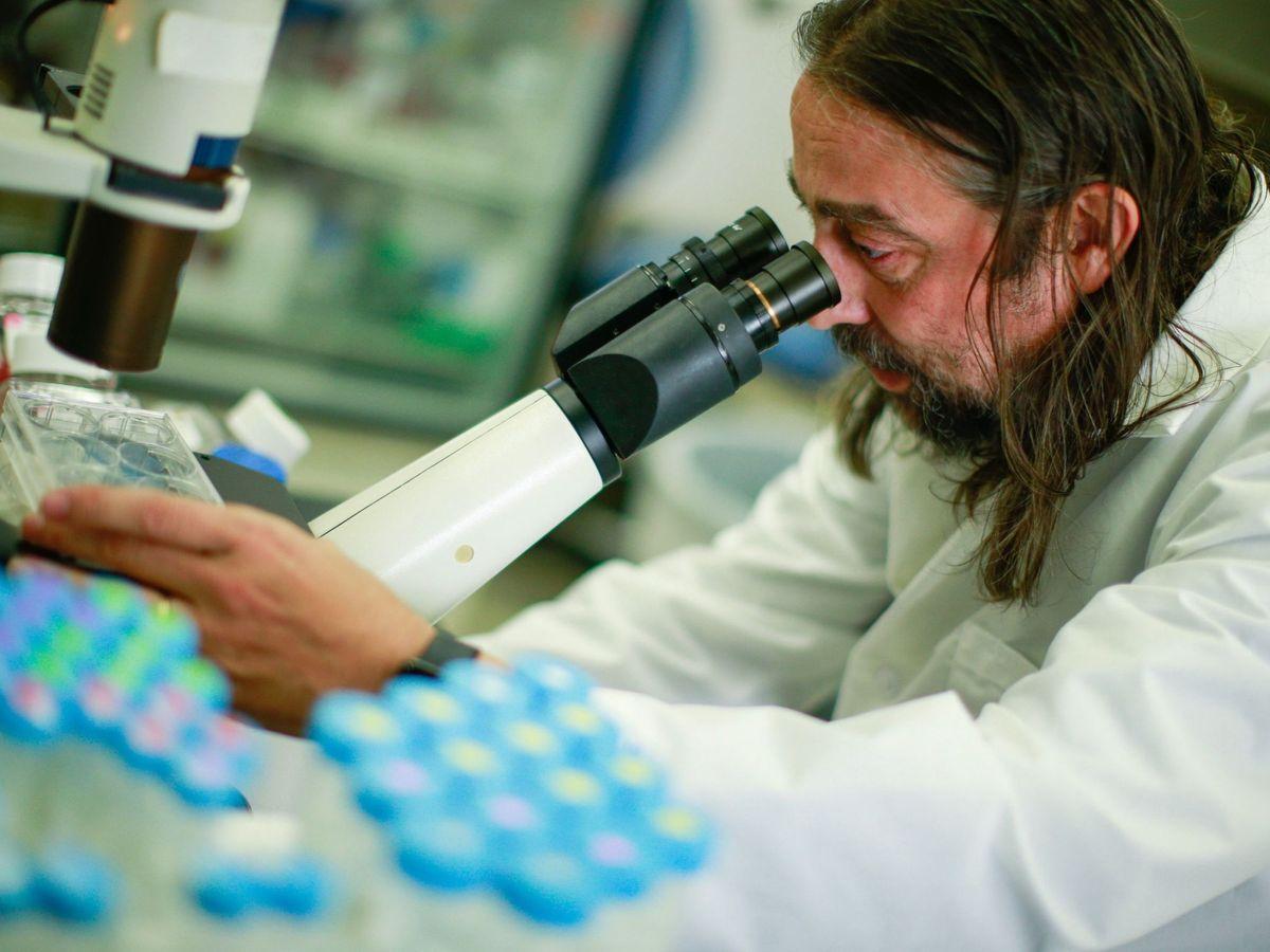 Foto: El virólogo Adolfo García Sastre. (EFE)
