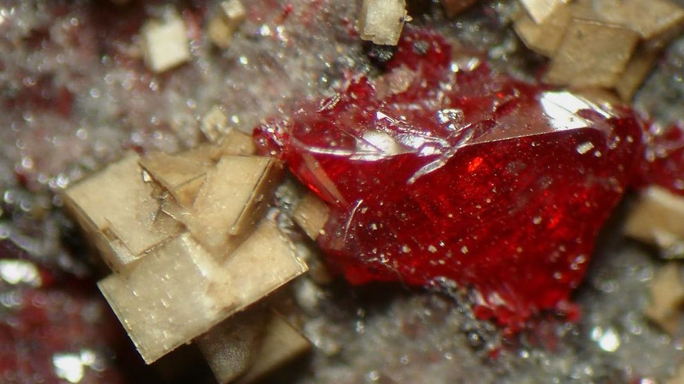 Química mortal: los minerales más letales del planeta