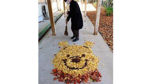 'Street art otoñal', los japoneses enloquecen en Instagram con las hojas caídas