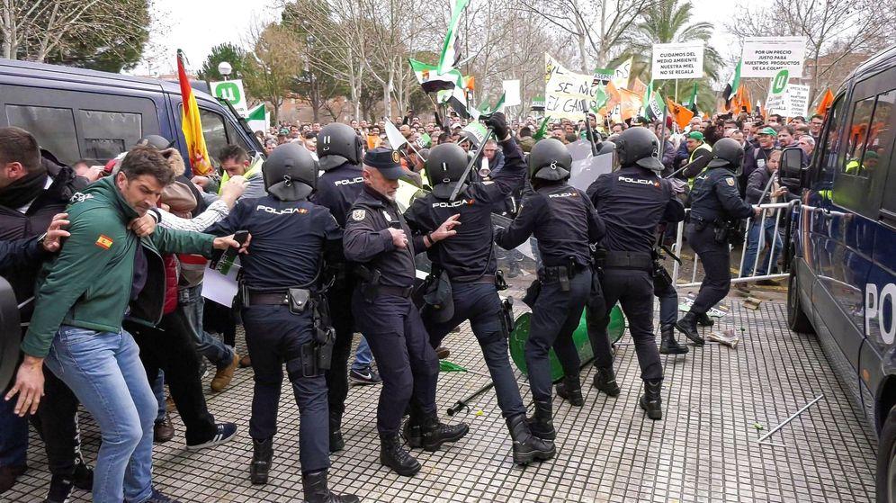 Foto: Centenares de agricultores confrontan con miembros de la policía nacional. (EFE)