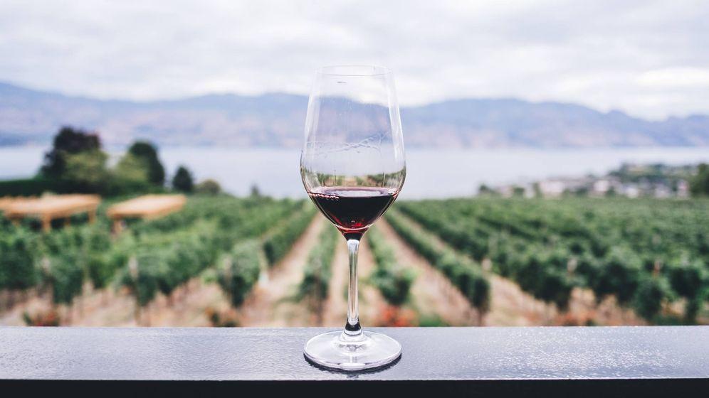 Foto: El vino también se puede disfrutar en verano.