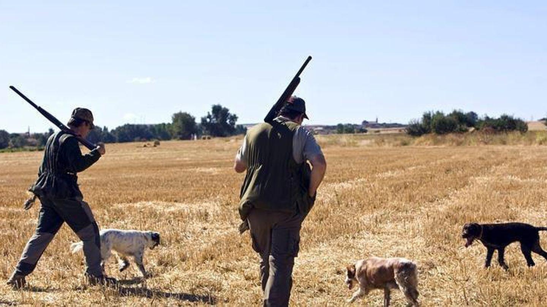 A día de hoy es más fácil pedir una licencia de caza en algunos lugares que el paro online.