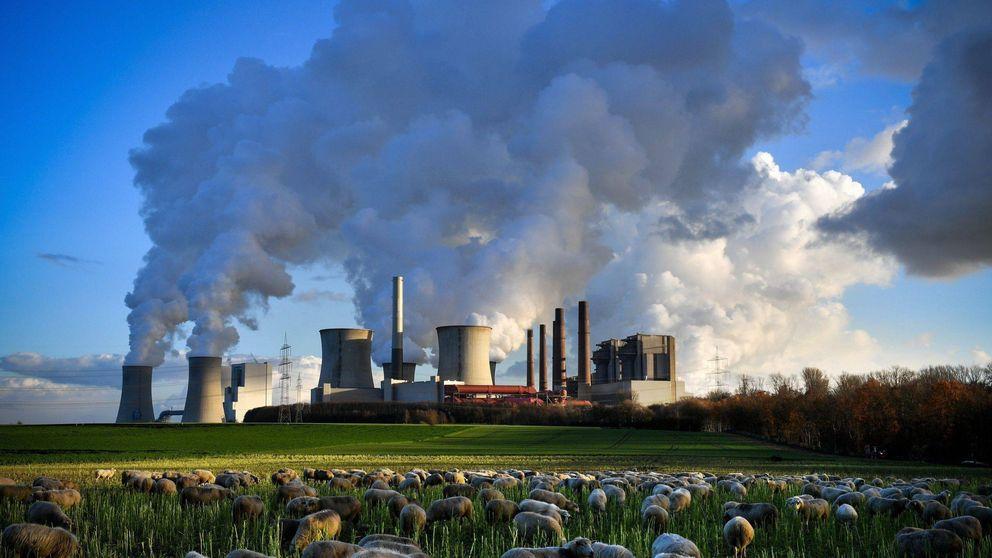 'Ecocidio' o 'flygskam': las palabras para entendernos en la Cumbre del Clima