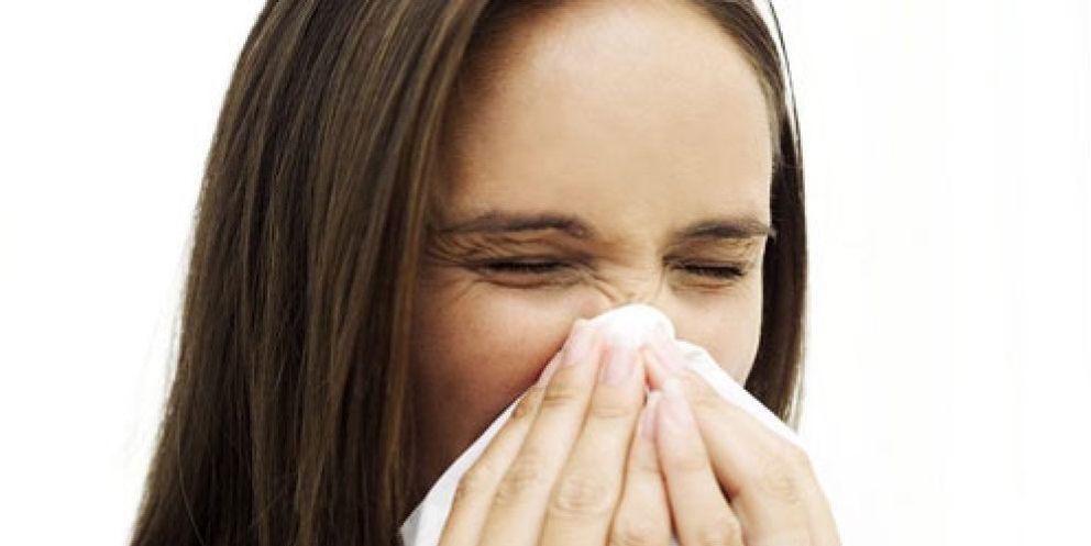 Foto: El verano hace que aumente el número de afectados por determinadas alergias