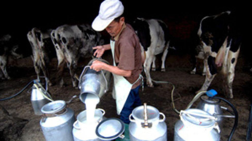 Bruselas prohibirá importar de China alimentos para niños que contengan leche