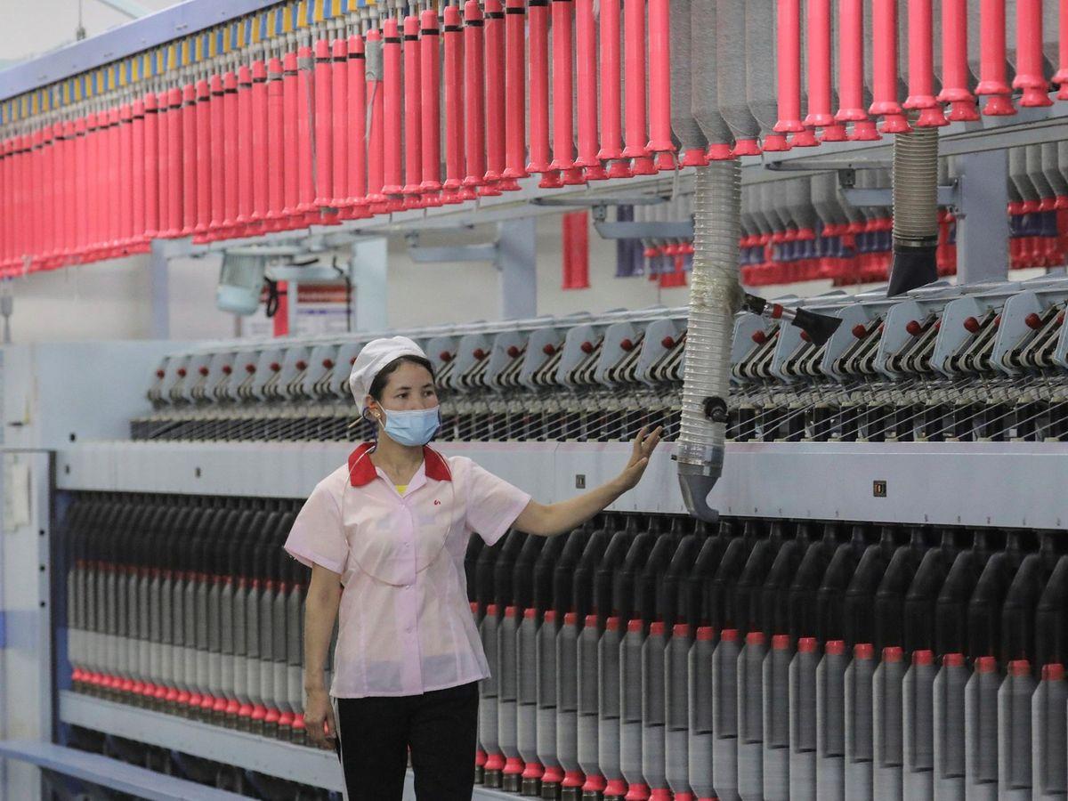 Foto: Fábrica de algodón en China (EFE)