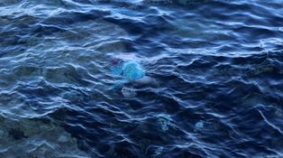 Las muertes silenciosas en el Mediterráneo son reales. Yo tengo que certificarlas