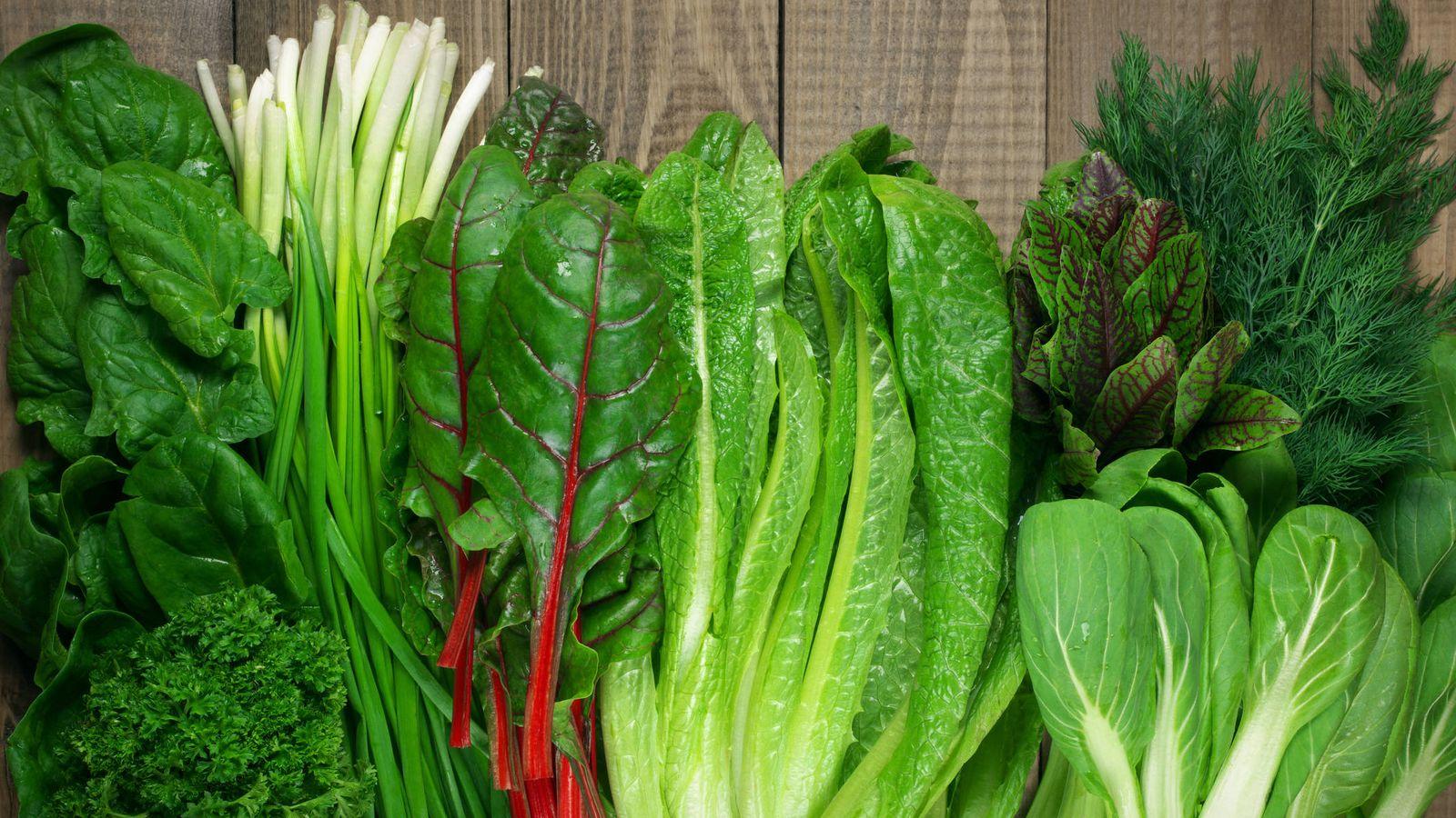 verduras de hojas