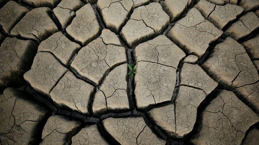 Fidelity, Allianz y 'el chapuzón' de las gestoras en los fondos de agua
