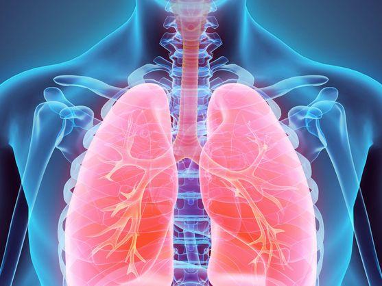 mejores alimentos para cuidar de los pulmones