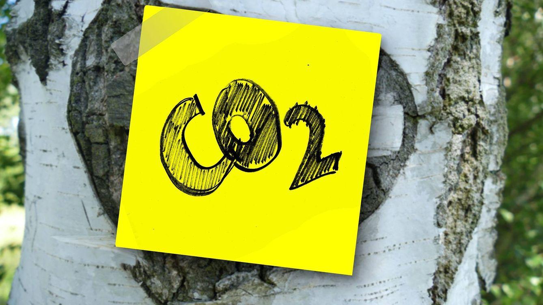 El objetivo de reducción de CO2 es imposible sin nueva tecnología y agrava la desigualdad