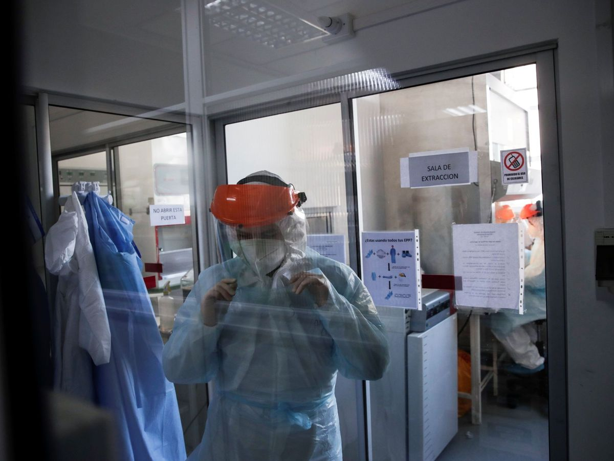 Foto: Los laboratorios universitarios, clave en el testeo de covid-19. (EFE)